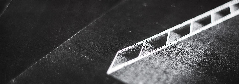 Leica-dia-detalhe-2